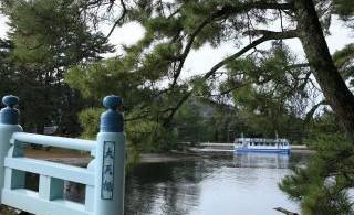 観光船にて天橋立を船から見ていただきます。