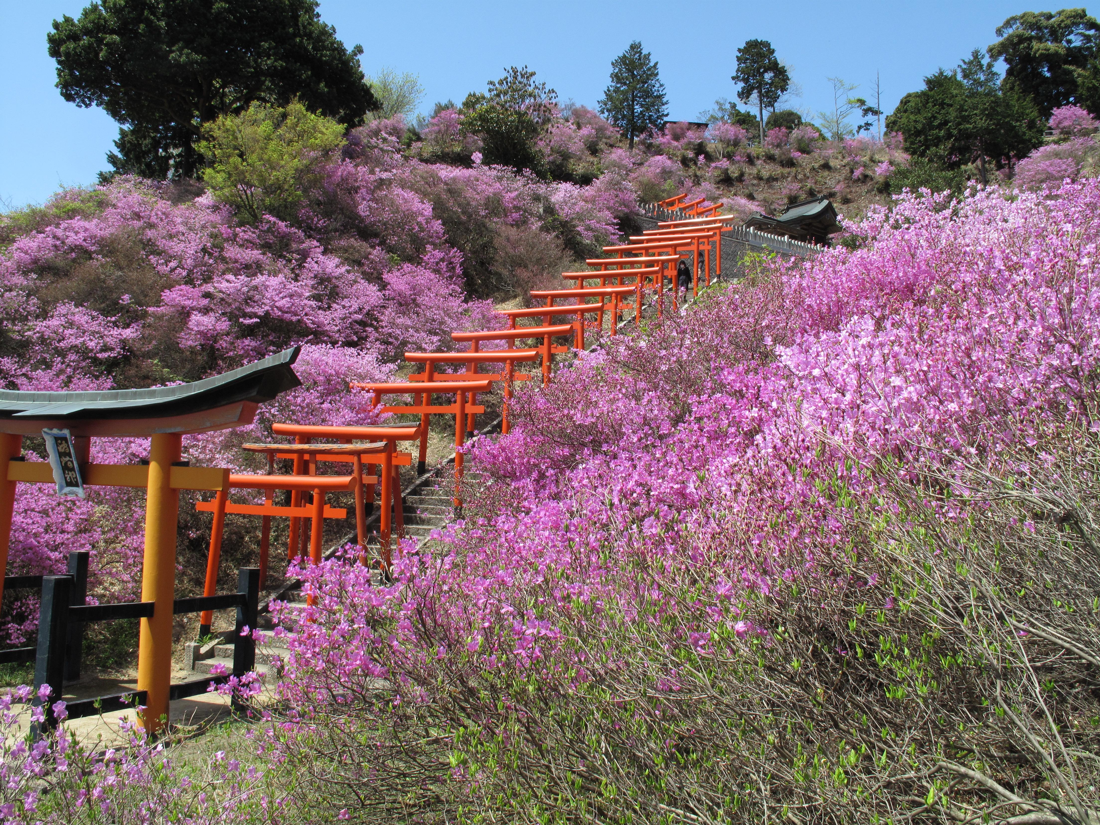 amanohashidate seasonal image03